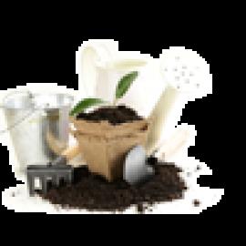 Семена и посадочный материал