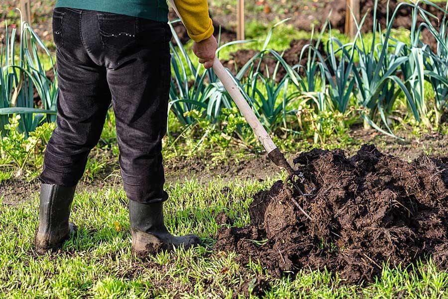 Органические удобрения для огорода